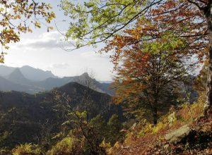 Природный парк Редес Астурия