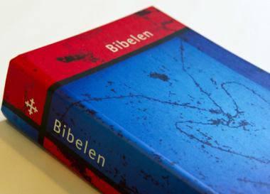 image22098.jpg.380x273 q77 box 390599401 crop - Осло. Открытие Музея Библии
