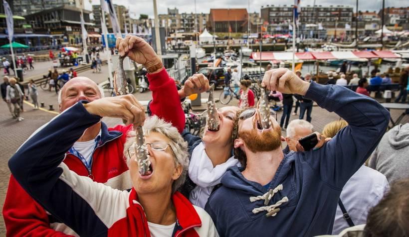 seledka - Амстердам. Праздник непослушания