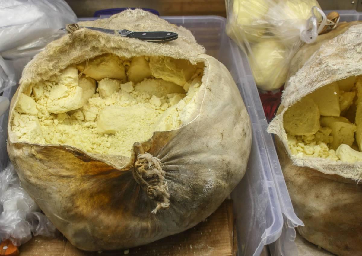 1b motal cheese - Азербайджан. Весне навстречу