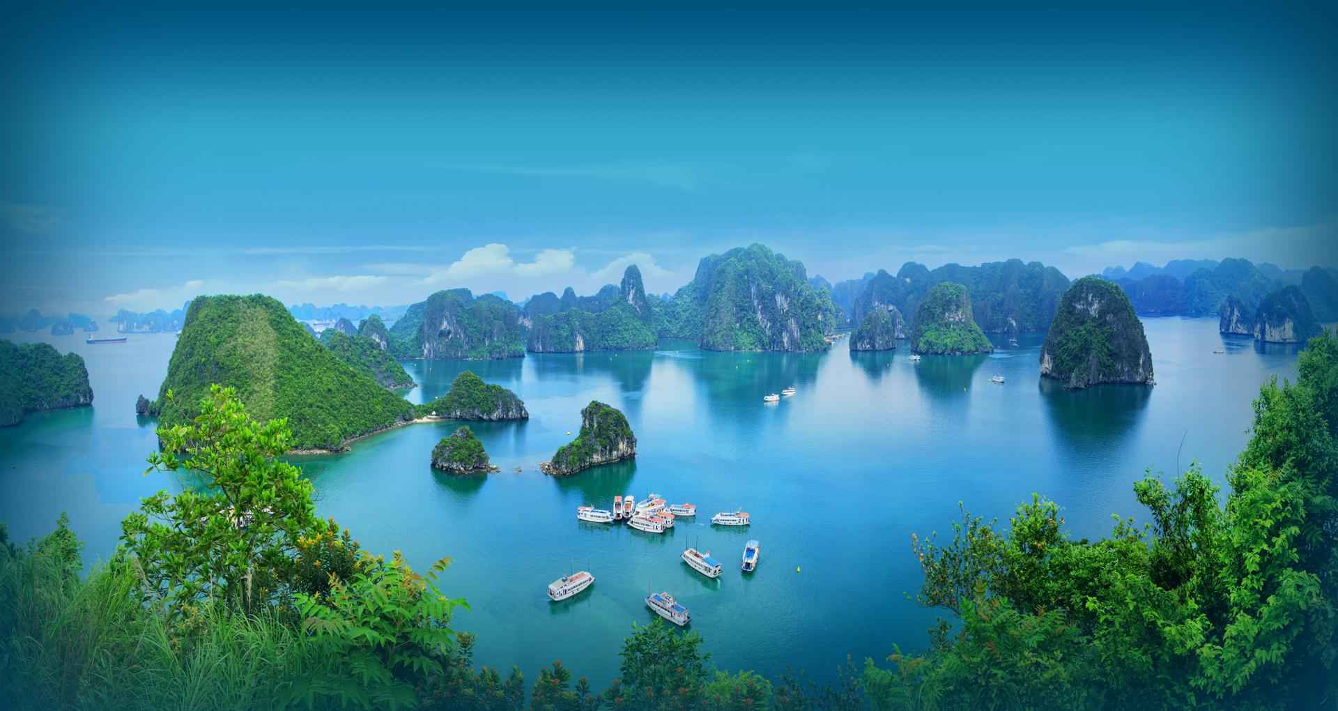 halong - Vietnam Airlines. Теперь в Шереметьево