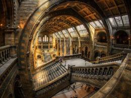 Лондон. День в музее