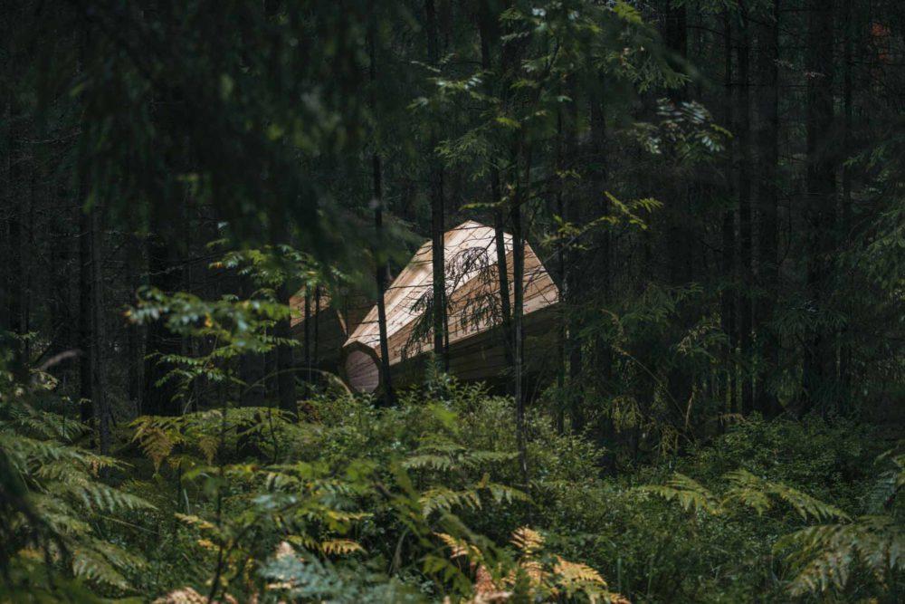 Forest Megaphone e1563483015421 - Эстония. Странные места