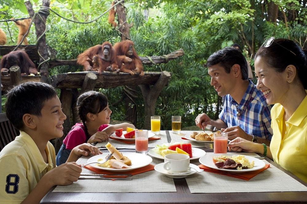 Breakfast - Сингапурский зоопарк. Накорми слона