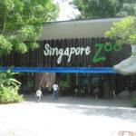 Singapore Zoo 150x150 - STB-Singapore