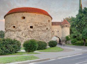 Таллин. Открытие обновленного Морского музея