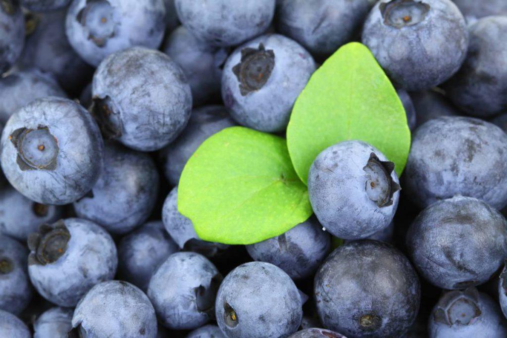 berries 2281 1280 1 1024x683 - Витамины. 5 интересных фактов