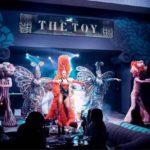 TheToy Show 150x150 - Новогодний фарш2