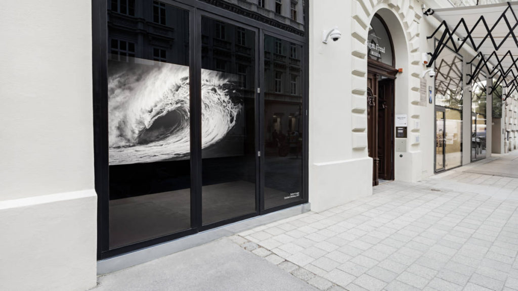 mailservice 1024x576 - Музей Зигмунда Фрейда в Вене. Vienna Showcase