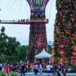 0 bfa40 4eab710e orig 150x150 - Singapore-Gardens-by-the-Bay-flowers