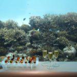 Huvafen Fushi SpaQuarium 1 150x150 - ok