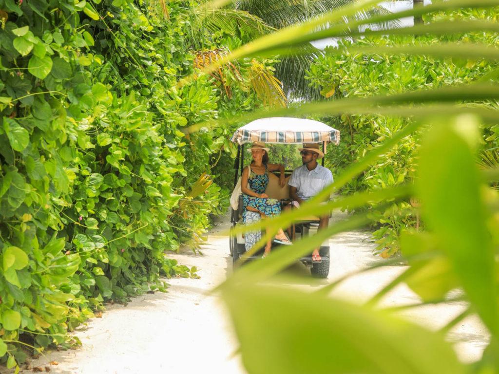 Baglioni Resort Maldives Vegetation Buggy 1024x768 - Baglioni Resort Maldives. Новые категории вилл