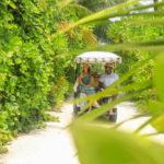 Baglioni Resort Maldives Vegetation Buggy 150x150 - Baglioni_Resort_Maldives_Aerial_Island_13