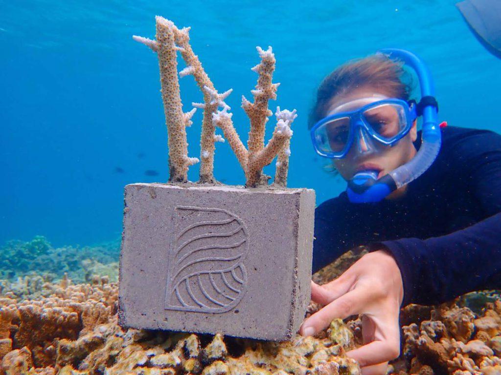 Baros1 1024x768 - Кубик жизни. Как Baros Maldives защищает океан